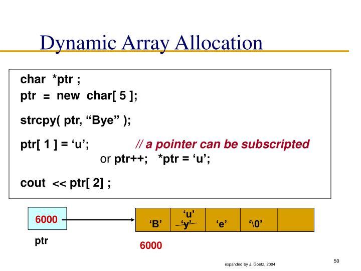 Dynamic Array Allocation