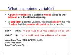 what is a pointer variable