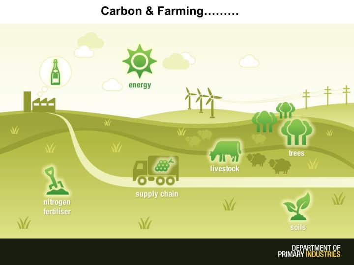 Carbon & Farming………