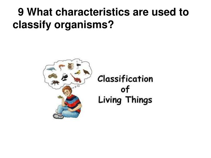 9 What characteristics are used to classify organisms?
