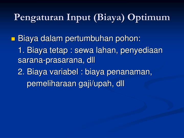 Pengaturan Input (Biaya) Optimum