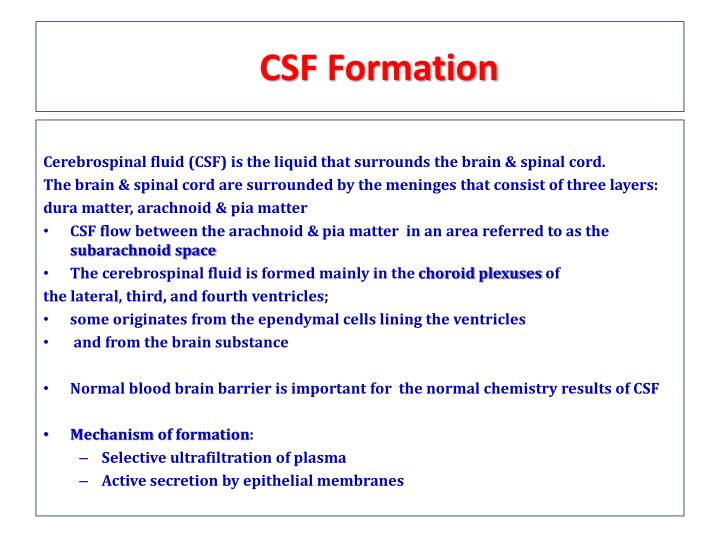 CSF Formation