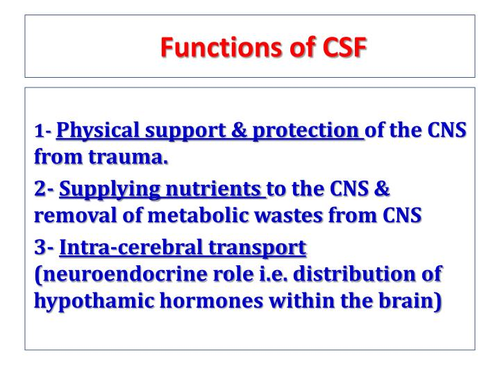 Functions of CSF