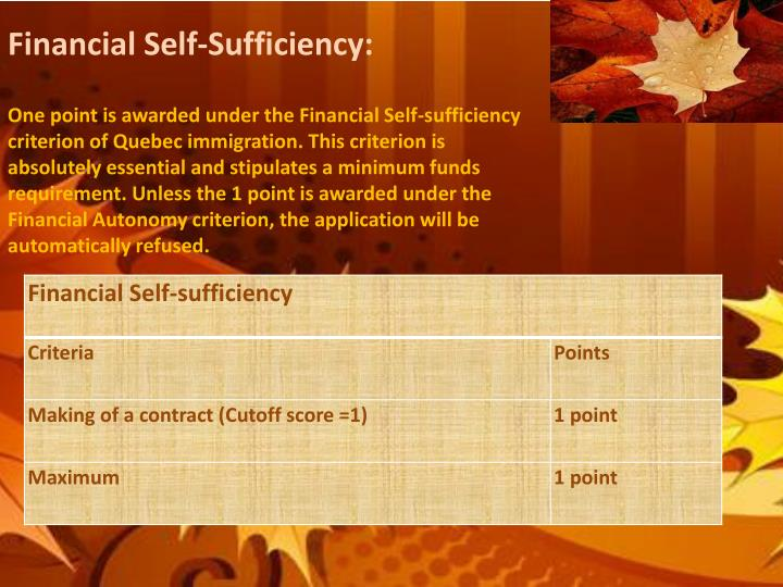 Financial Self-Sufficiency: