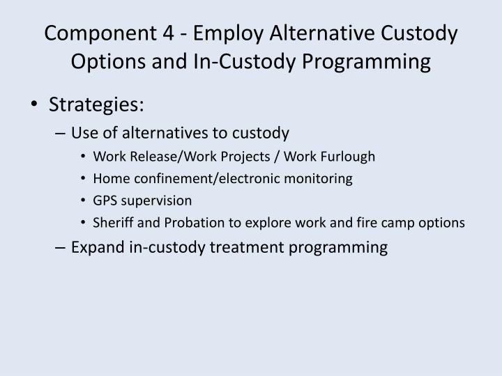 Component 4 - Employ Alternative Custody Options and In-Custody Programming