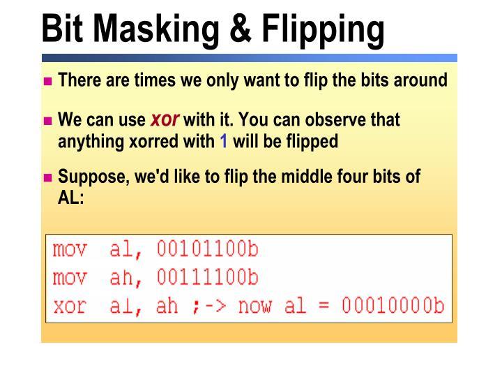 Bit Masking & Flipping