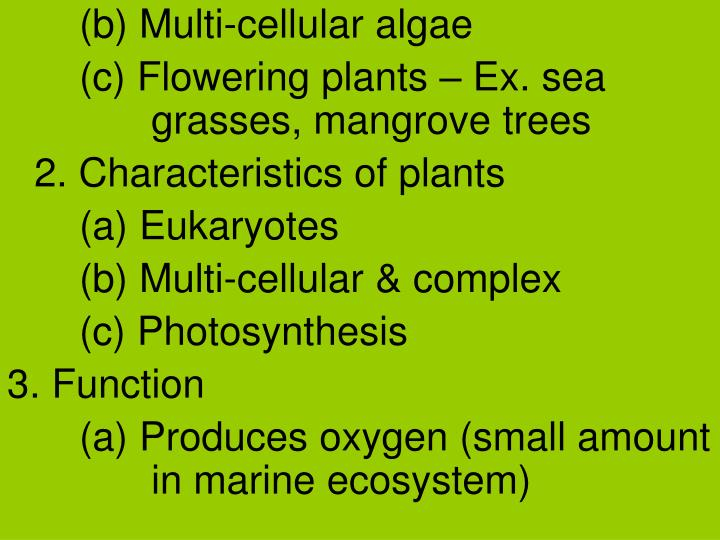 (b) Multi-cellular algae