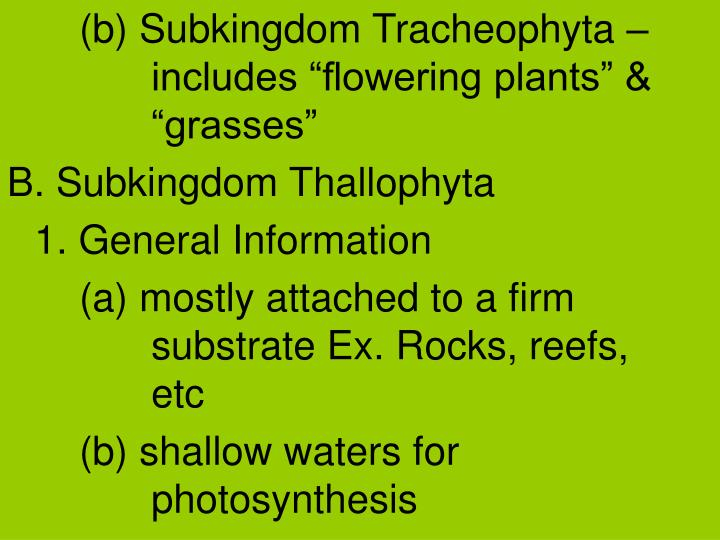 "(b) Subkingdom Tracheophyta – includes ""flowering plants"" & ""grasses"""