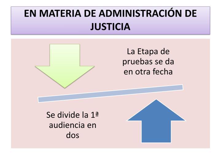 EN MATERIA DE ADMINISTRACIÓN DE JUSTICIA
