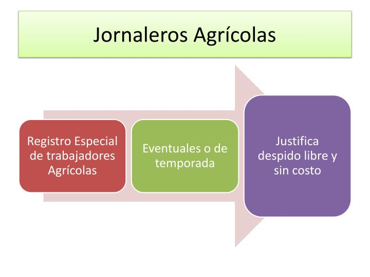 Jornaleros Agrícolas