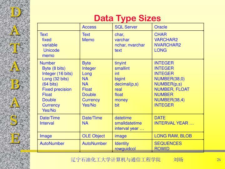 Data Type Sizes