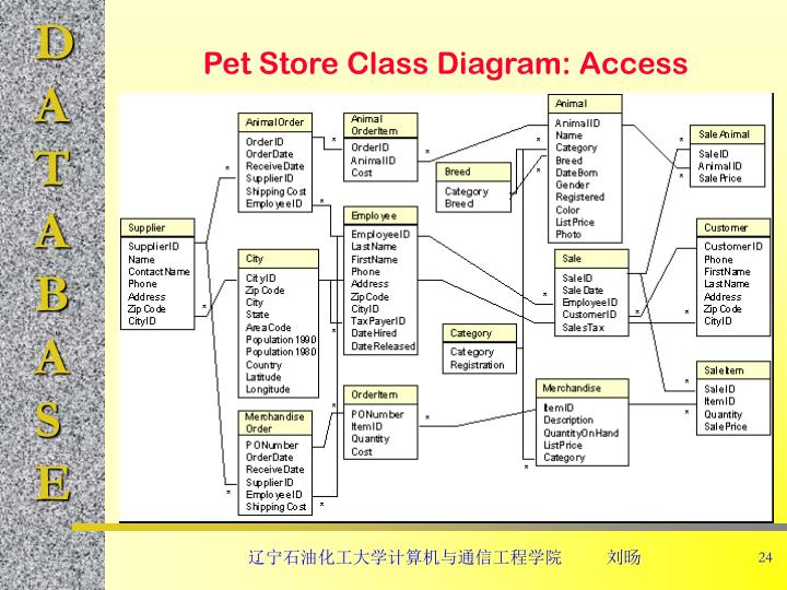 Pet Store Class Diagram: Access