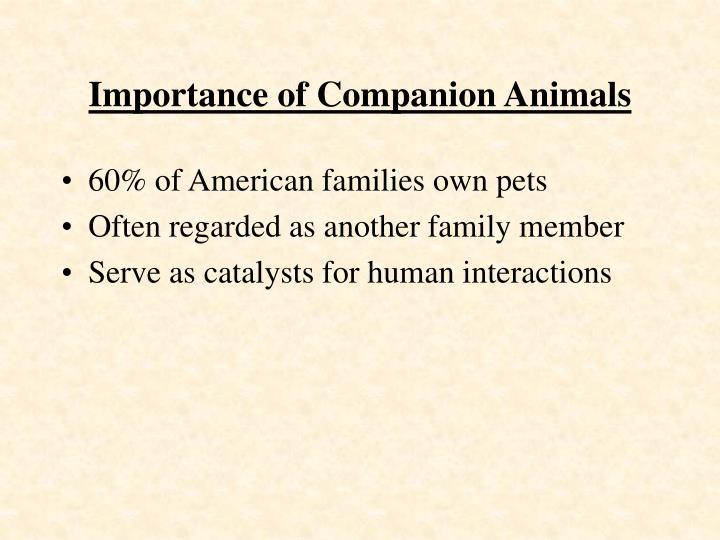 Importance of Companion Animals