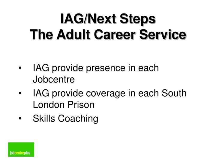 IAG/Next Steps