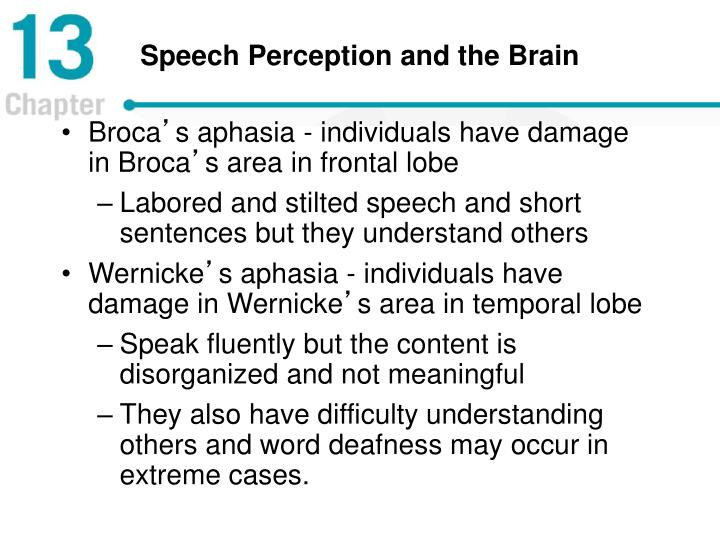Speech Perception and the Brain