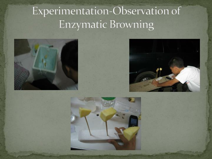 Experimentation-Observation of Enzymatic Browning