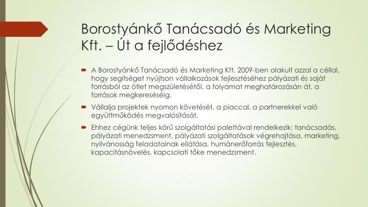 Borostyánkő Tanácsadó és Marketing Kft. – Út a fejlődéshez