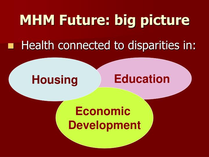 MHM Future: big picture