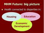 mhm future big picture
