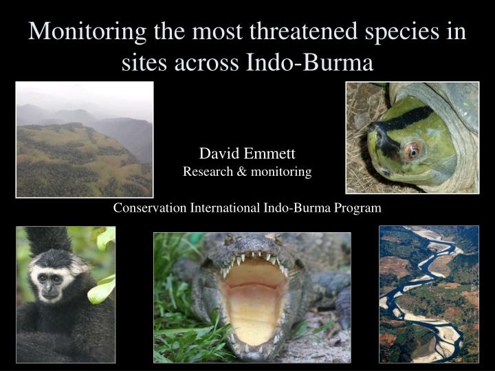 Monitoring the most threatened species in sites across indo burma