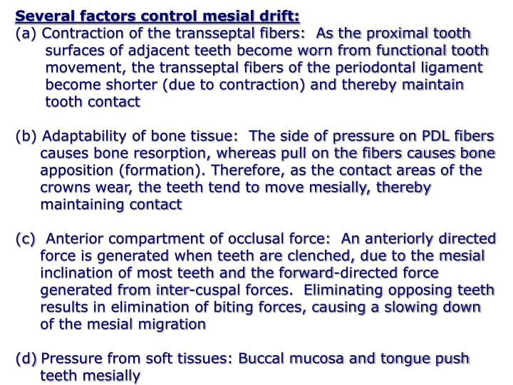 Several factors control mesial drift: