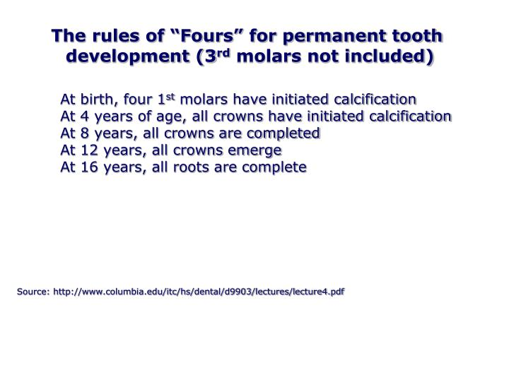 "The rules of ""Fours"" for permanent tooth"