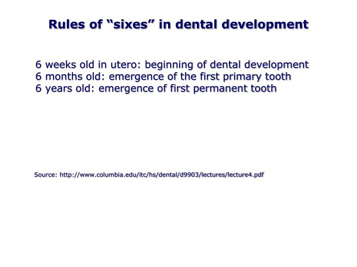 "Rules of ""sixes"" in dental development"