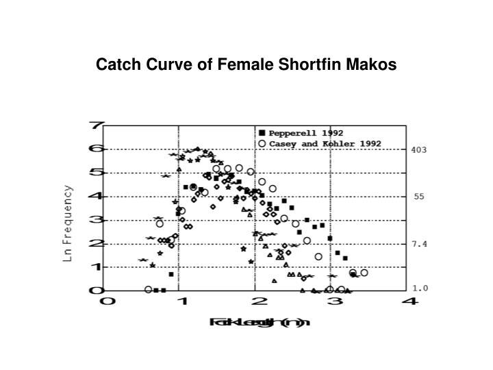 Catch Curve of Female Shortfin Makos