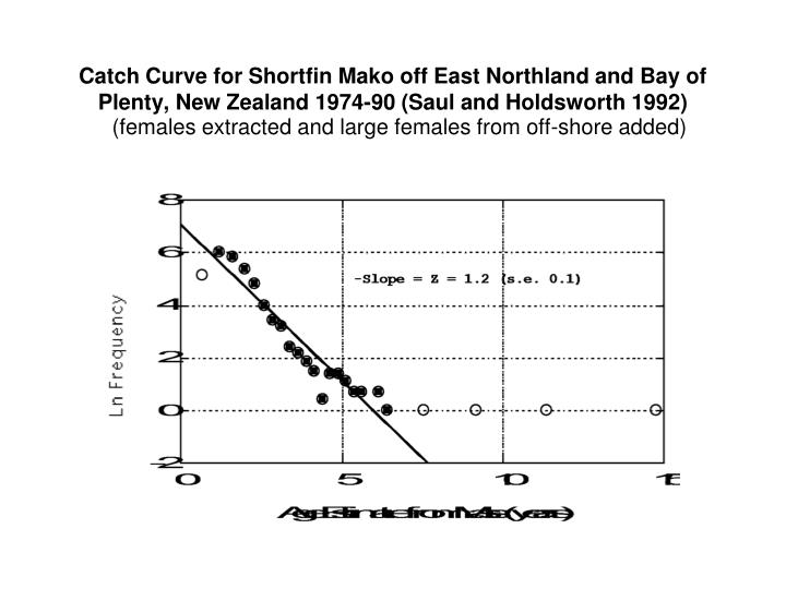 Catch Curve for Shortfin Mako off East Northland and Bay of Plenty, New Zealand 1974-90 (Saul and Holdsworth 1992)