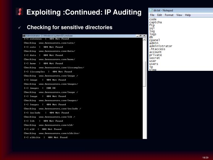Exploiting :Continued: IP Auditing