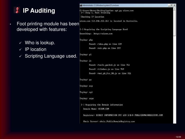 IP Auditing