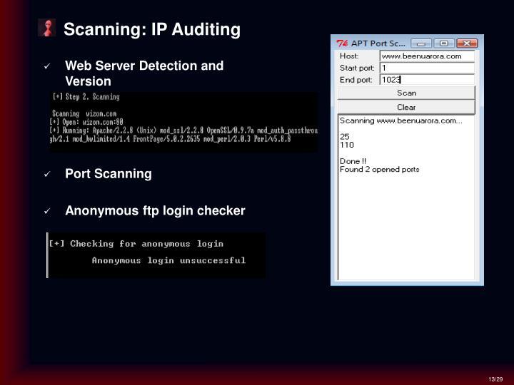 Scanning: IP Auditing