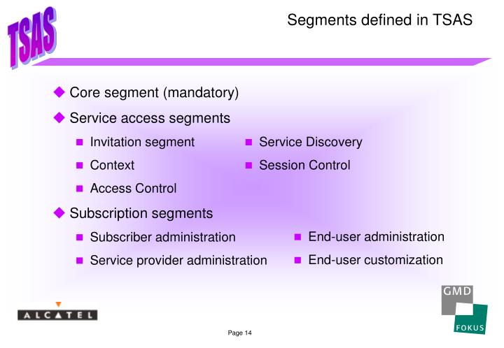Segments defined in TSAS