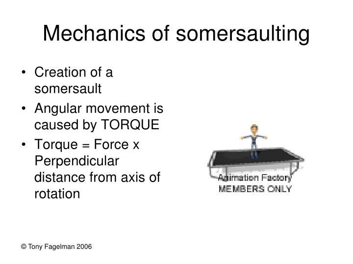 Mechanics of somersaulting