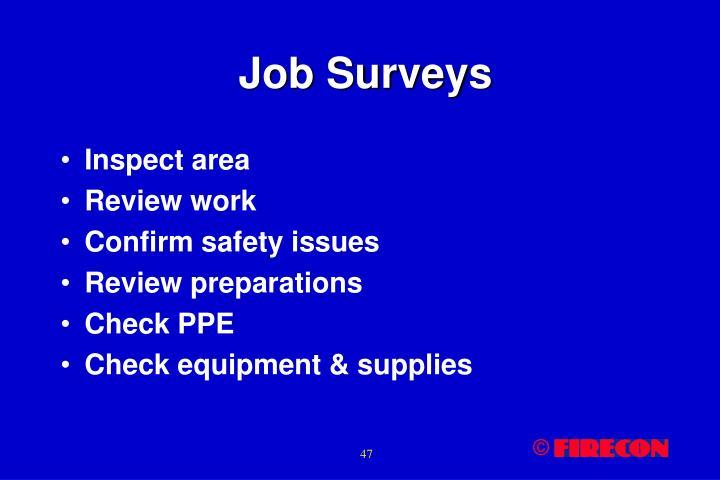 Job Surveys