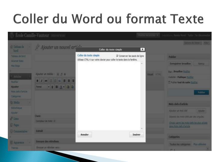 Coller du Word ou format Texte