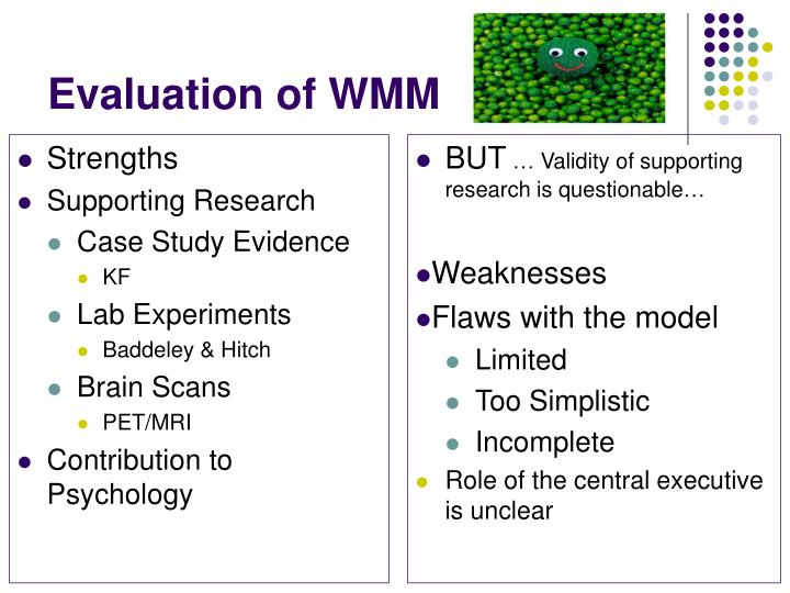Evaluation of WMM