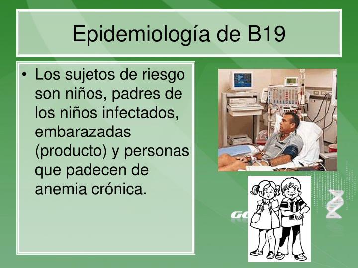 Epidemiología de B19