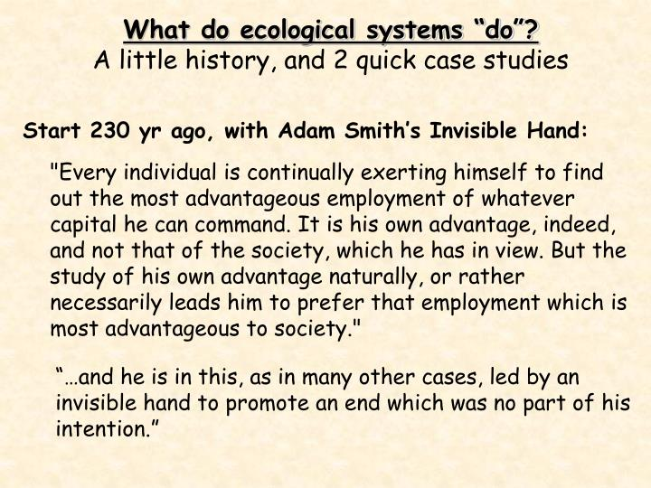 """What do ecological systems """"do""""?"""