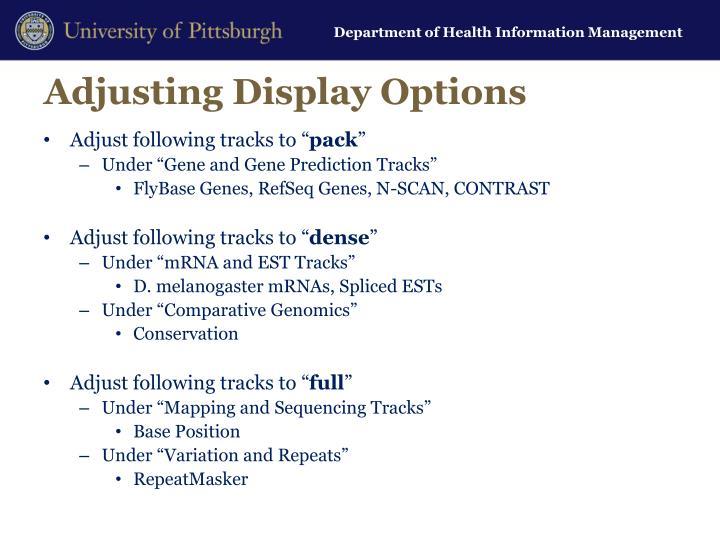 Adjusting Display Options