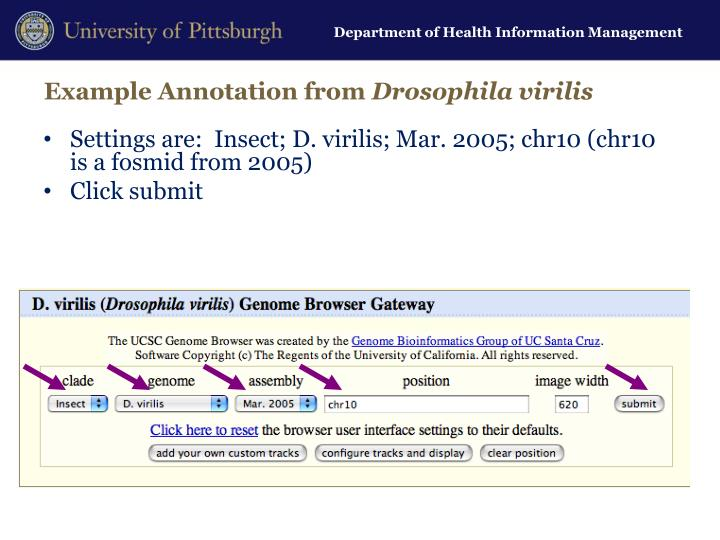 Example Annotation from