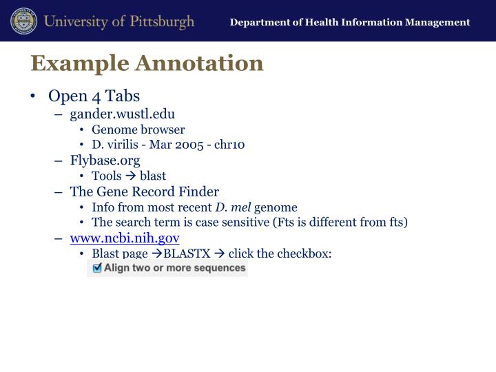 Example Annotation