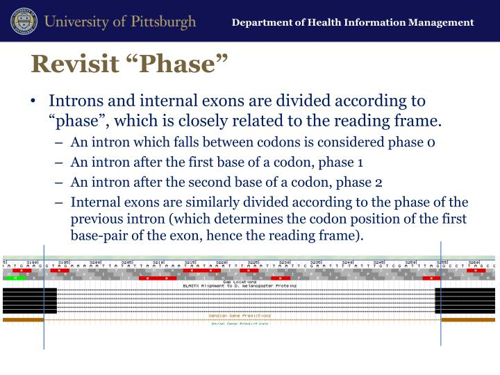 """Revisit """"Phase"""""""