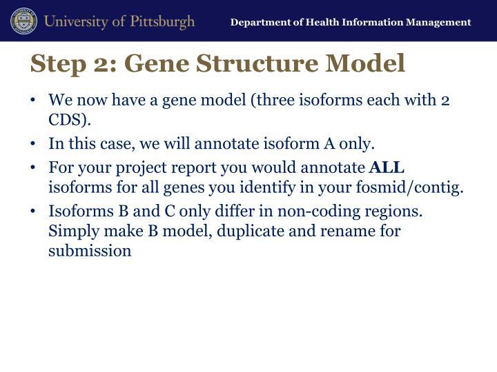 Step 2: Gene Structure Model