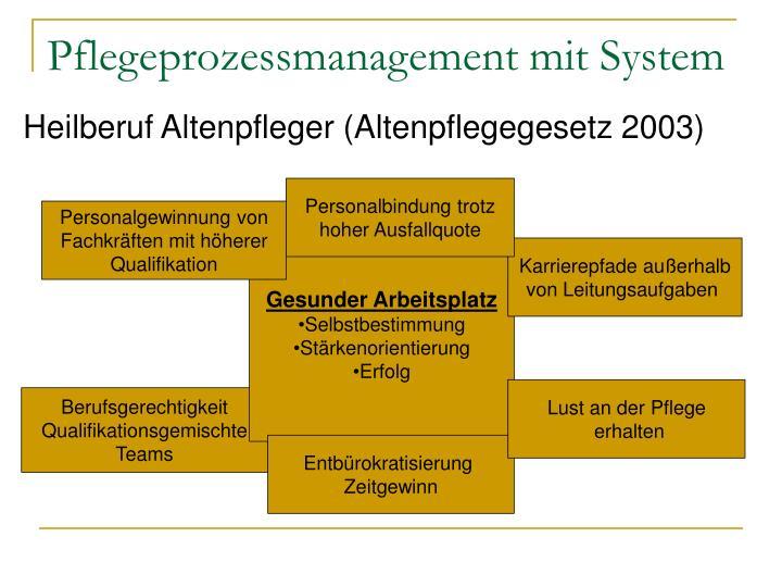 Pflegeprozessmanagement mit System