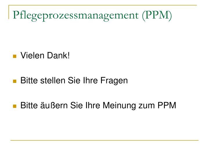 Pflegeprozessmanagement (PPM)