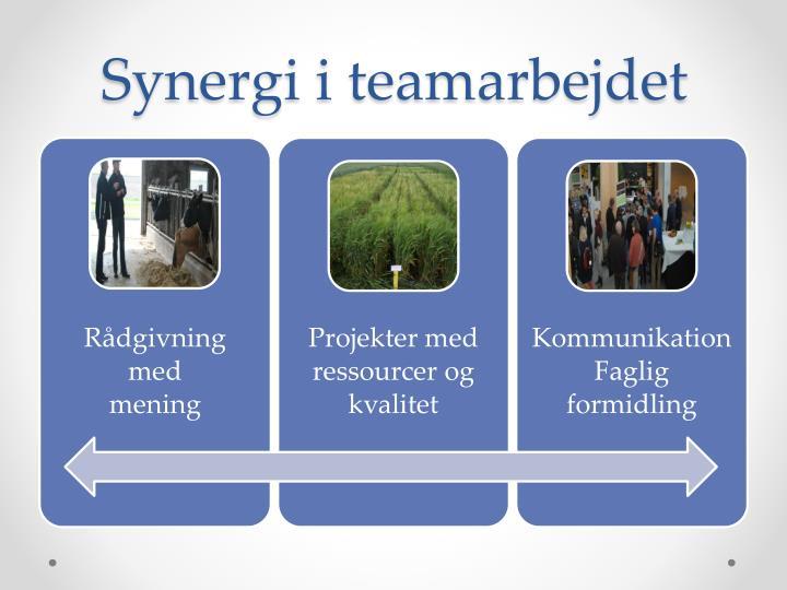 Synergi i teamarbejdet