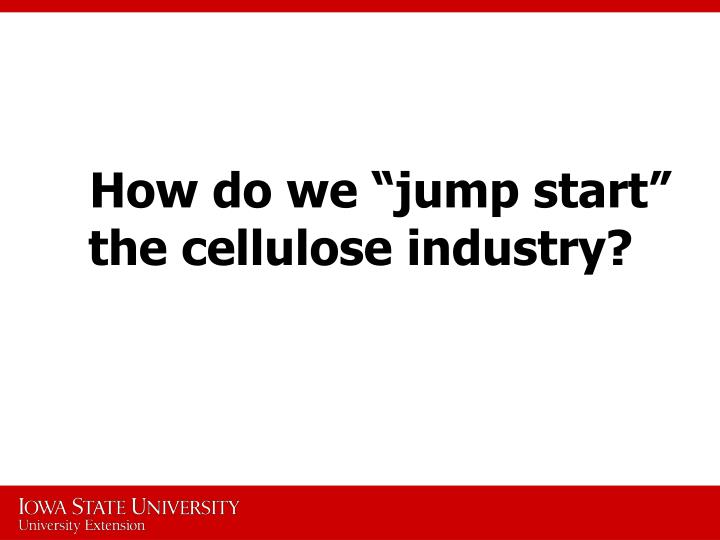 "How do we ""jump start"" the cellulose industry?"