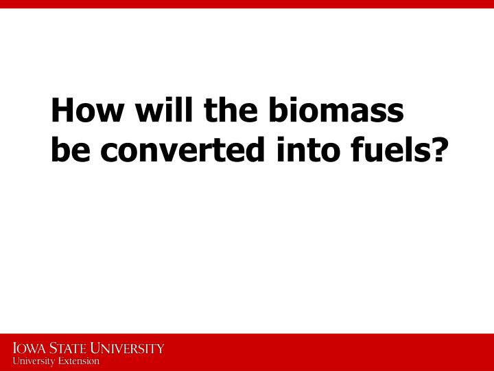 How will the biomass be converted into fuels?