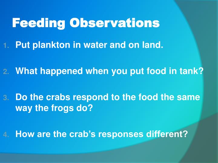 Feeding Observations